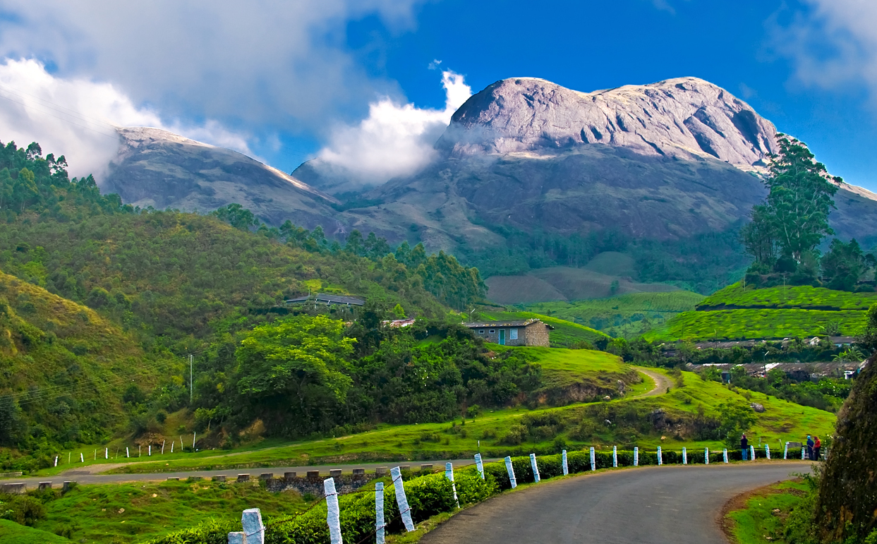 Munnar_Places_To_Visit_In_India_Monsoon