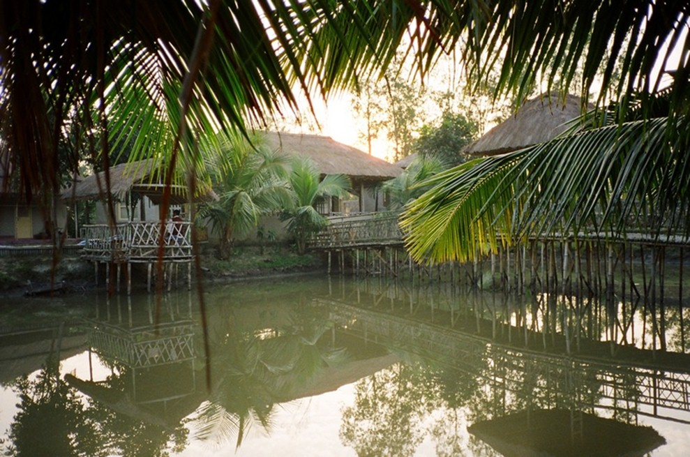 Camping destinations in India - sunderbans