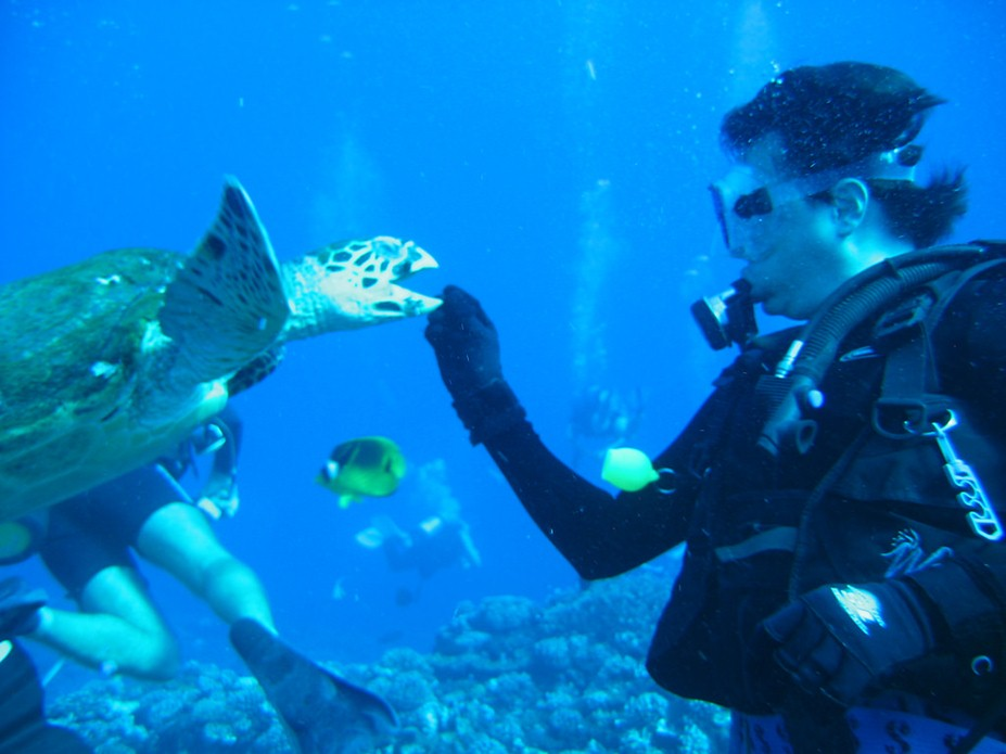 scuba diving places in India