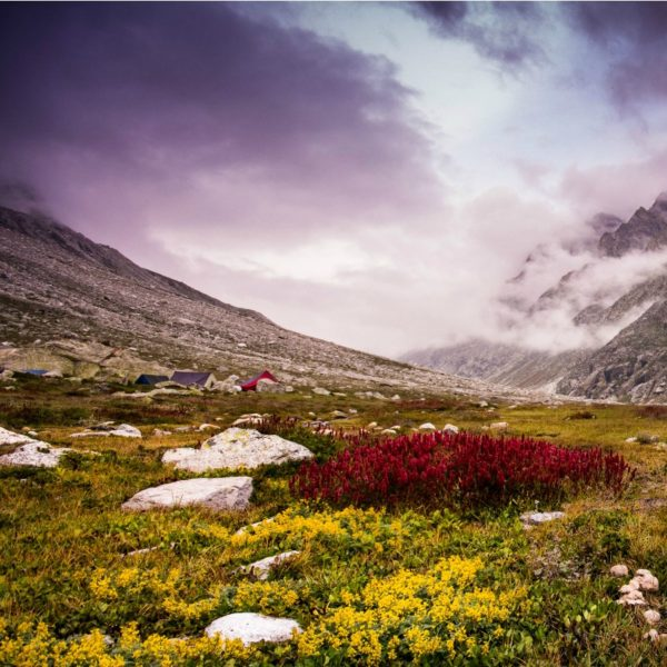 Valley of Flowers Trek Package Pic
